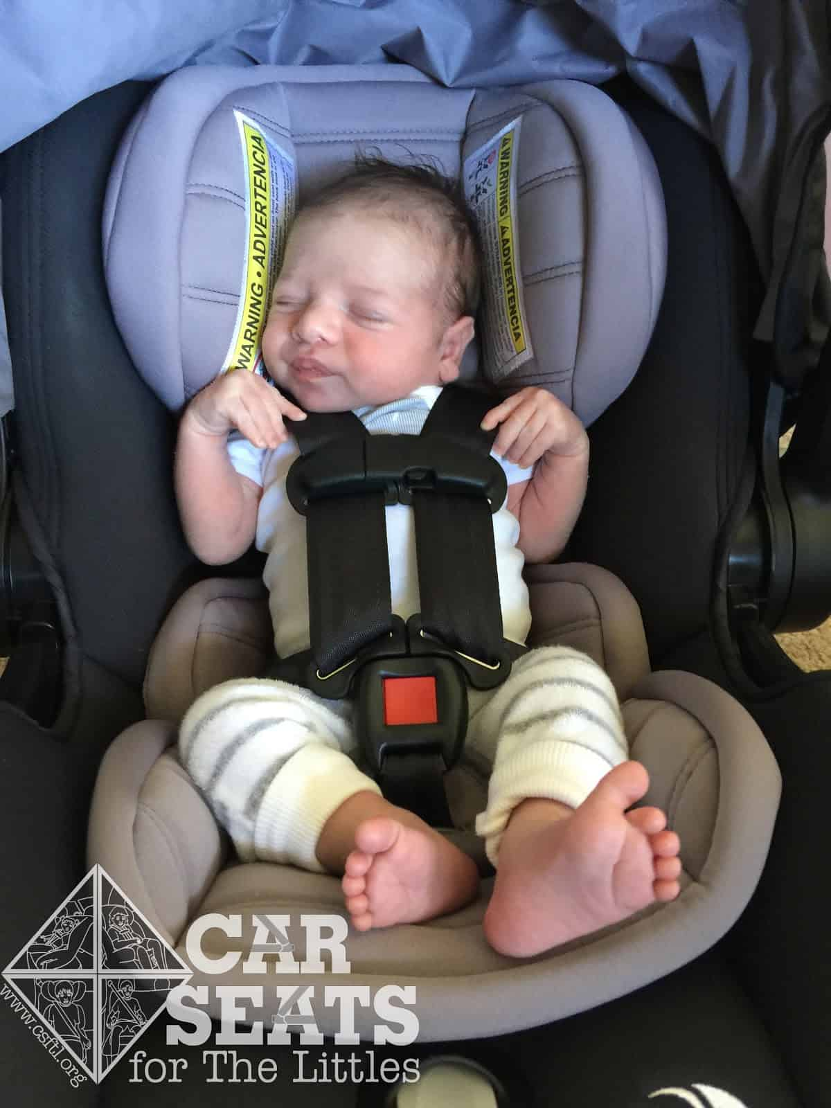 Baby Jogger City Go: 2 weeks old, 9 lbs, 20 inches tall